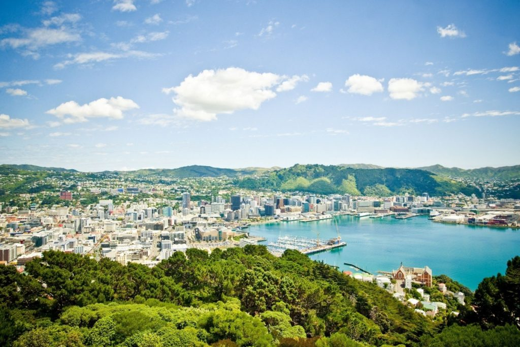 Mount-Victoria-view-WellingtonNZ-Photo-Capture-Studios-Copy
